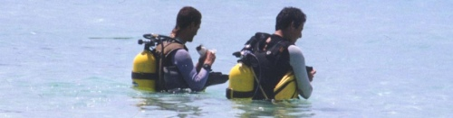 צלילה בפיליפינים, בורקאי