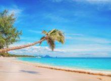 טיסות לקריביים - זמן טיסה לקריביים וגם טיול צלילה בבהאמס