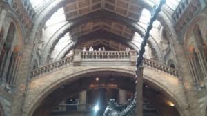 אגף הדינוזאורים במוזיאון הטבע של לונדון. טיול משפחות קלאסי