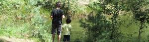 פורום טיולי משפחות באתר טייל - מבחר מסלולים והמלצות
